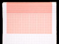 Ordner-Einlagen in ROT (250 Stk)